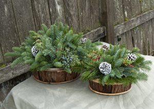 Bark Baskets with Fresh Greens